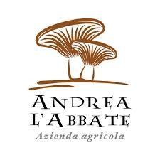 Andrea L'Abbate